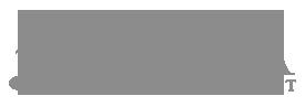 NAPFA-logo2